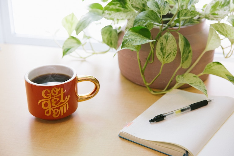 open notebook with pen next to green plant and cup of coffee