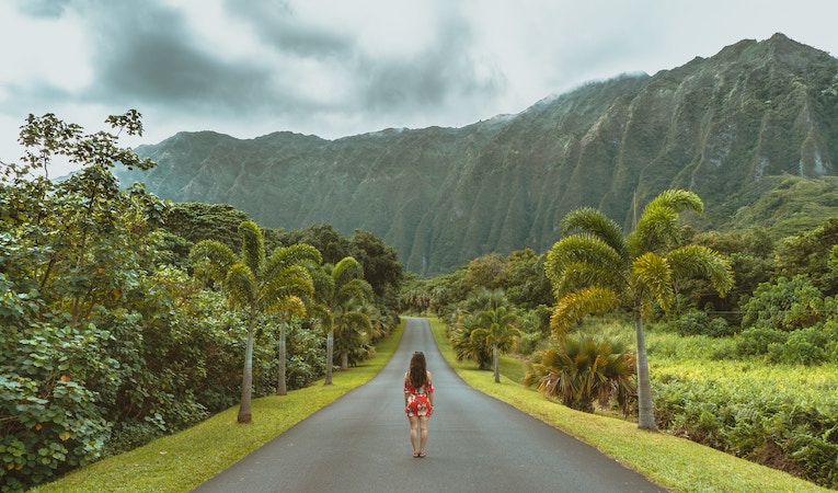 person standing in road in hawaii